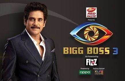Bigg Boss Telugu Season 3 Online Voting – Public Opinion Poll (Unofficial)