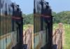 Train Driver's Alertness Saves An Elephant's Life