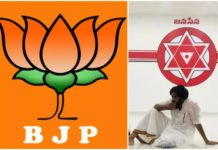 Bjp Became Strong In Tg After The Alliance With Jsp?