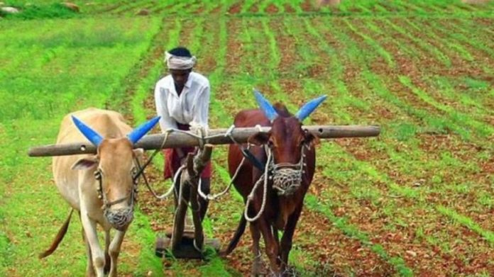 Maharashtra Government Will Have To Bear The Burden Of So Many Crores On Farm Loan Waiver