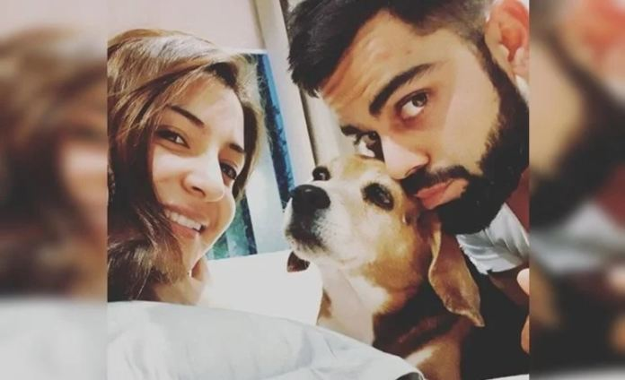 Virat And Anushka Mourn The Loss Of Their Pet Dog 'bruno'