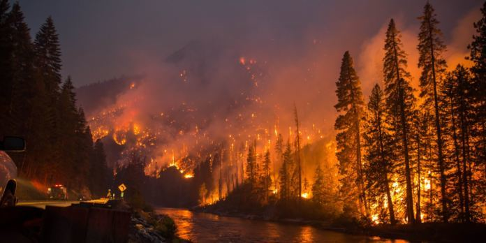 Forest Fires, Heat Waves Troubling Us – Half Million Evacuated